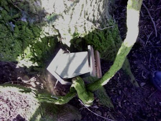Geocache bug house