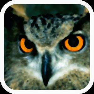 http://www.seo.org/2014/02/18/primera-aplicacion-movil-para-observar-y-conocer-sobre-el-terreno-las-aves-espanolas/