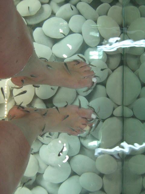 Experiências de Viagens: Kissing Fish – Santorini