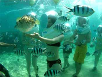 Sea Walker Ocean Walker Bali