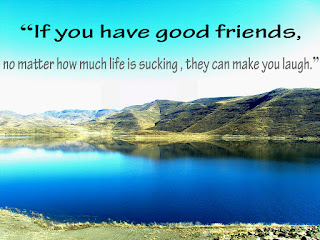 """If you have good friends, no matter how much life is sucking , they can make you laugh."""