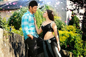 Aagadu movie latest photos-thumbnail-4