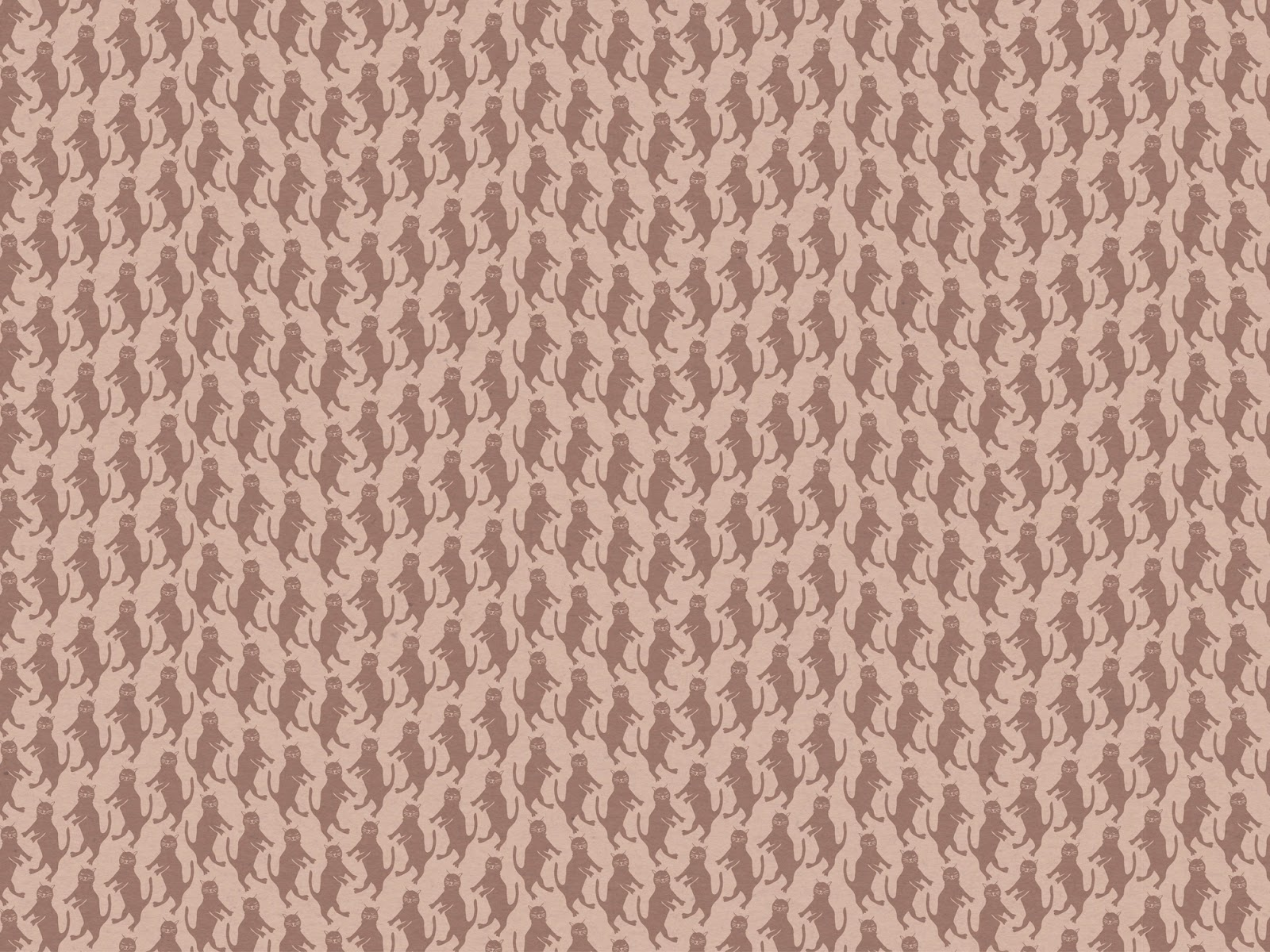 cat-wallpaper, cat-desktop-wallpaper