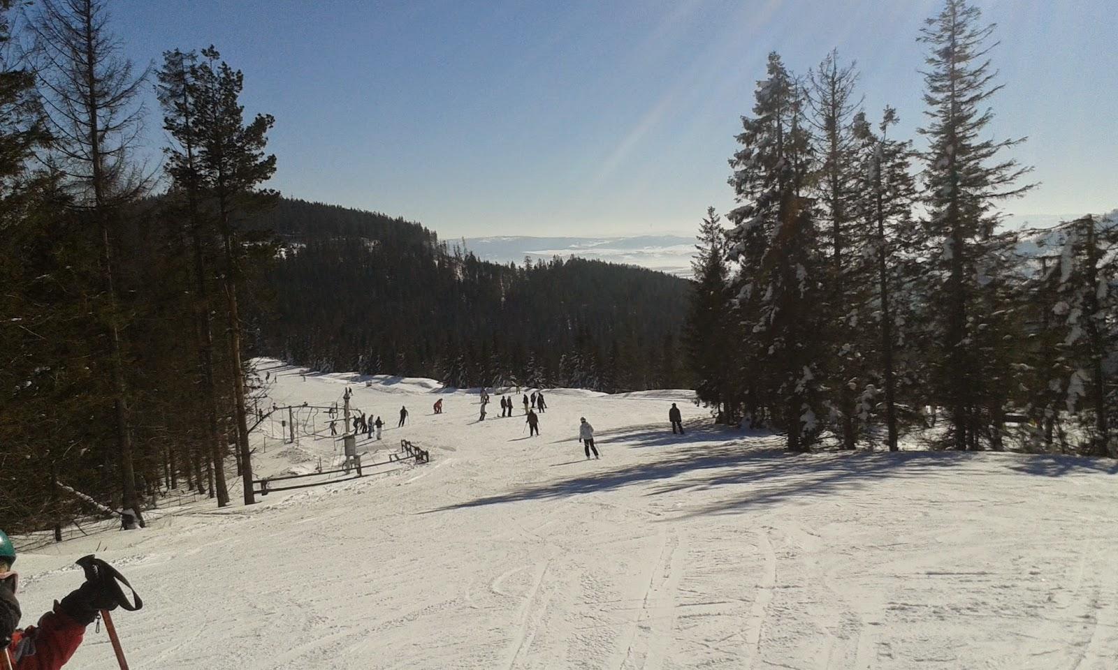 Bachledova Dolina niebieska trasa narciarska