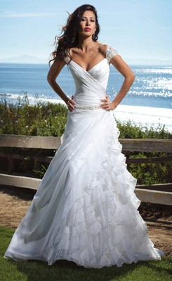 Wedding dress and our lovely wedding the 2013 beautiful for Very cheap wedding dress