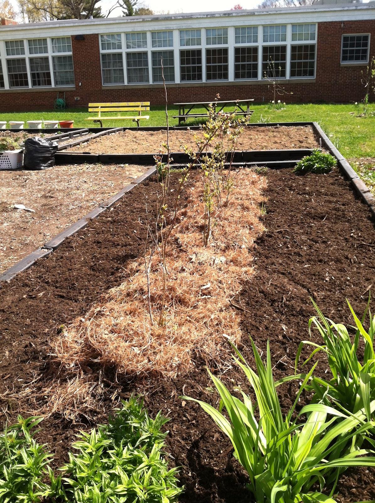 Makefield Learning Garden