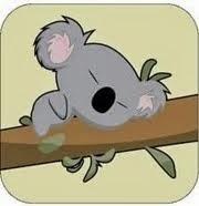 Me gustan los koalas!!!