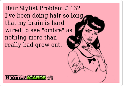 The Conversations in my Head: Hair Stylist Problems