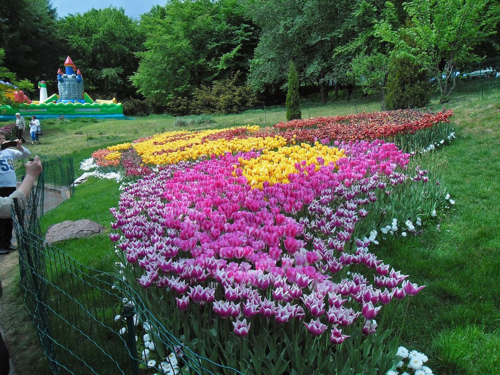 Выставка цветов и садоводства