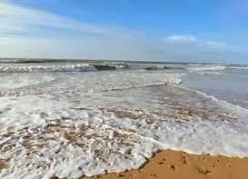 l'odeur de la mer retirée