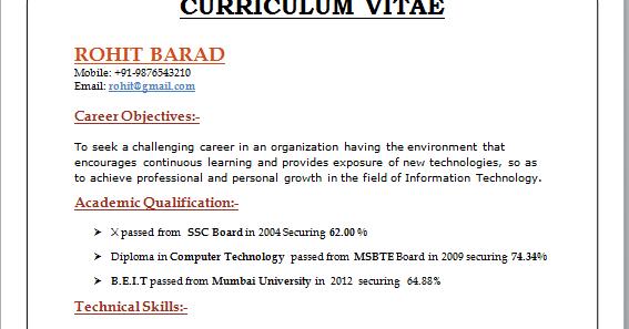 professional curriculum vitae format