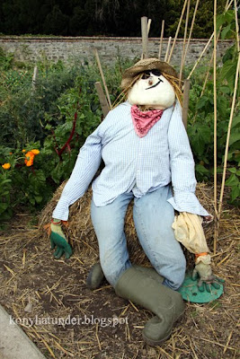 august-in-the-garden-scarecrow