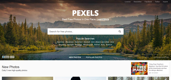 Situs Penyedia Gambar Gratis Pexels