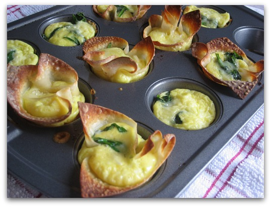 mini muffin tin wonton quiche