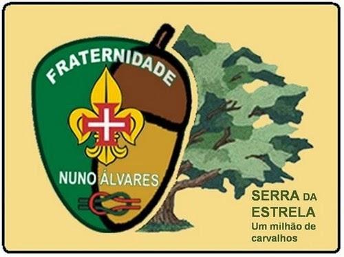 UM MILHÃO DE CARVALHOS - SERRA DA ESTRELA