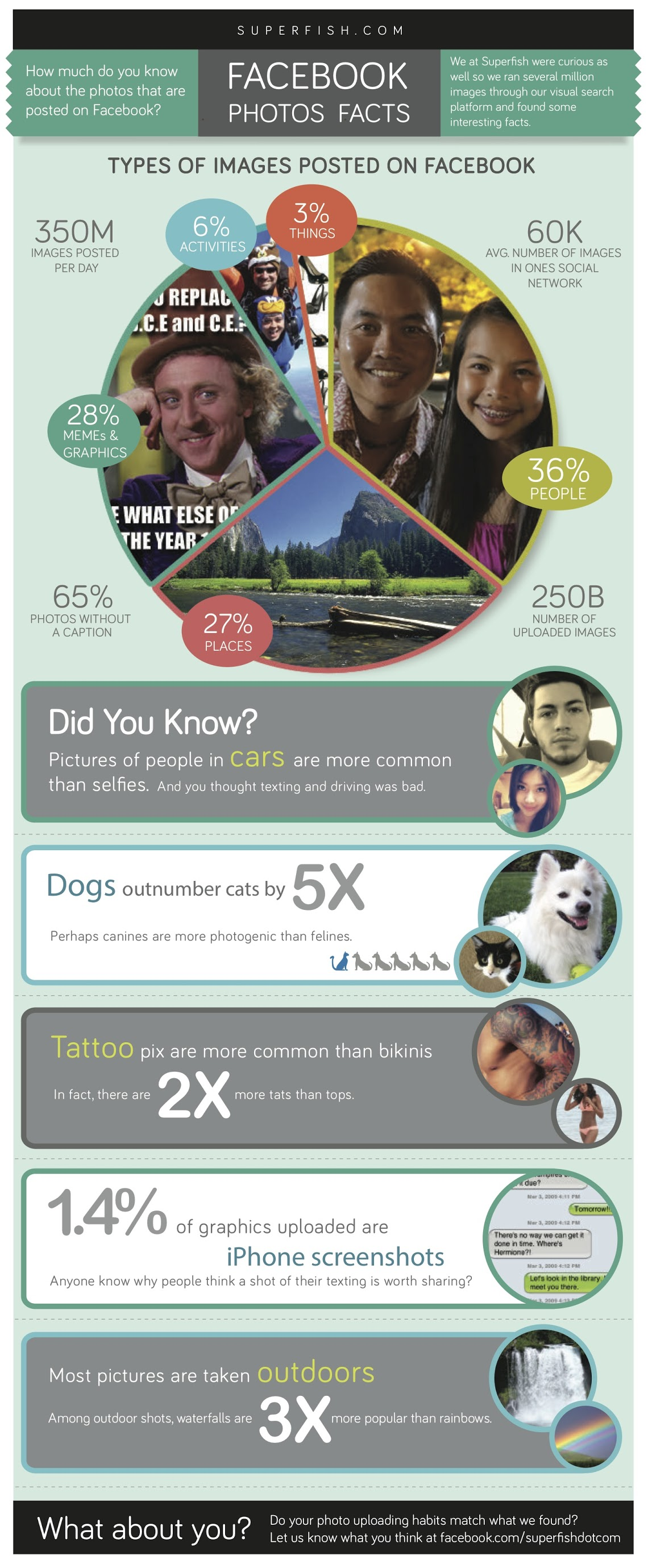 10+ Facebook Photo Facts [INFOGRAPHIC]
