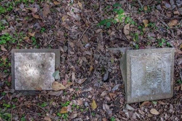 cementerio de mascotas abandonado