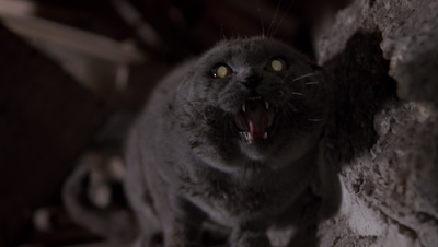 The Top 10 Scariest Animals In Movies | Pet Semetary