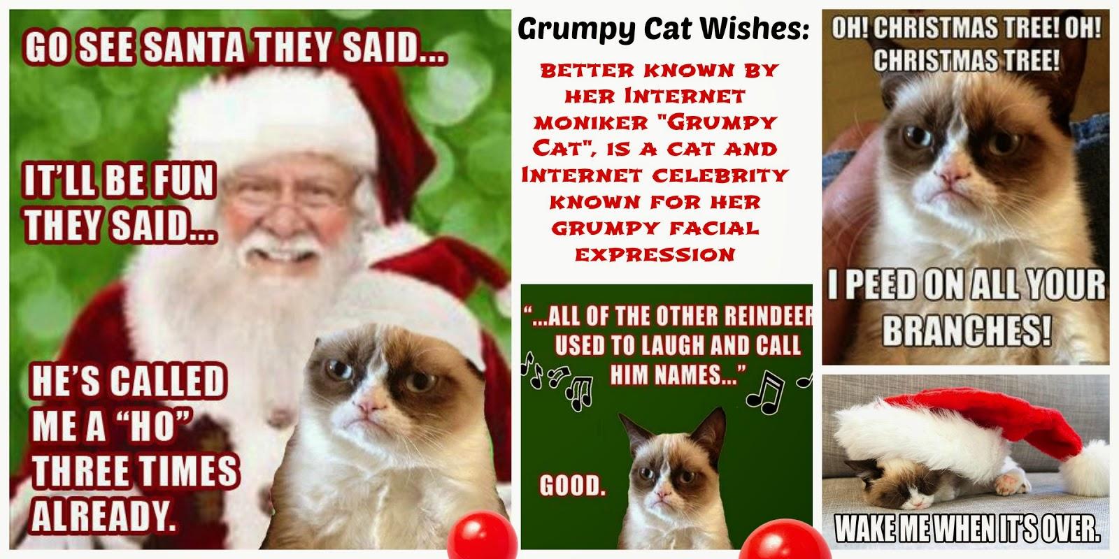 Christmas tree grumpy cat
