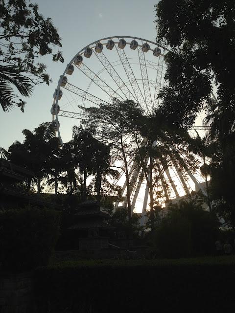 wheel of Brisbane at southbank