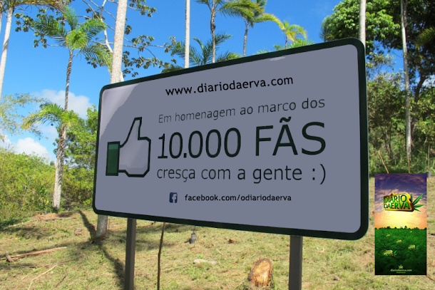 10 mil fãs no Facebook do Diário da Erva ... Queremos agradecer a vocês pelo carinho de sempre.