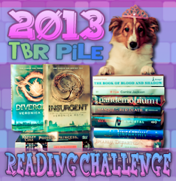 2013 TBR Pile Challenge!