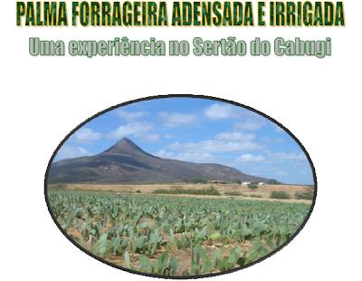 Cartilha: Palma forrageira adensada e irrigada: uma experiência no Sertão do Cabugi