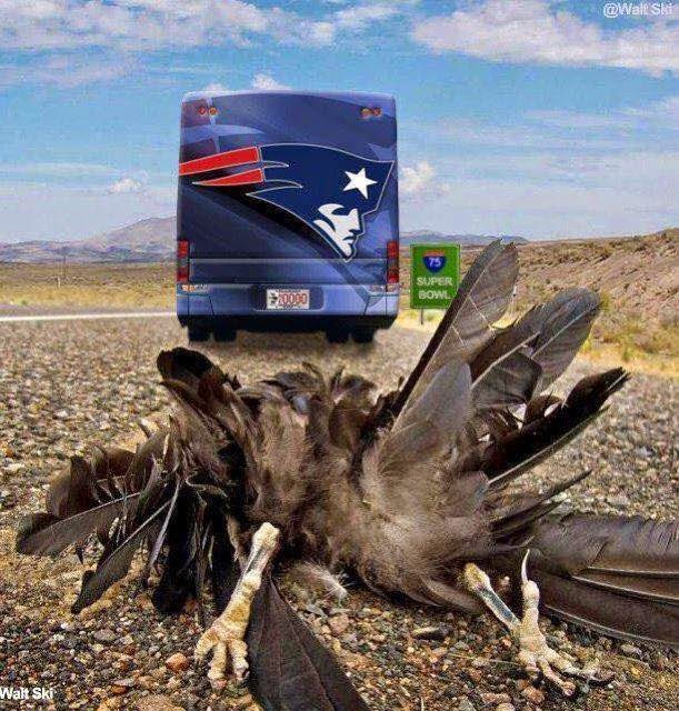Patriots Bus run over Ravens - Superbowl - #Patriots #ravenshaters #Patriotsbus #Superbowl #runover
