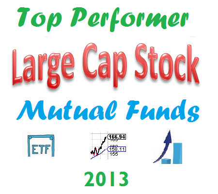 Top Performing U.S. Large Cap Stock Mutual Funds 2013