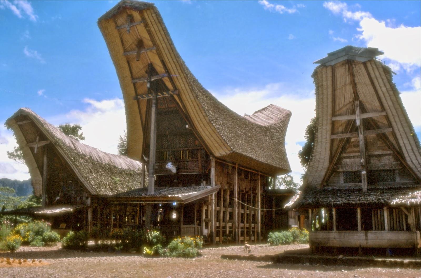 Download this Rumah Adat Tongkonan picture