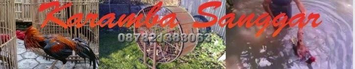 Karamba Sanggar HP:0878.2138.3063