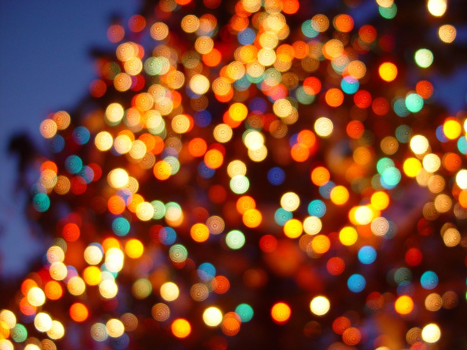 cantata natal Feliz Natal para todos!!