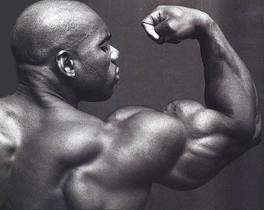 Soccer Wallpaper  Flex Wheeler Body Builder