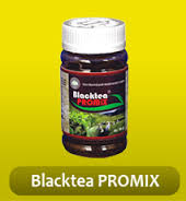 BLACK TEA PROMIX JAKARTA