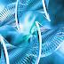 El ejercicio físico modifica el ADN