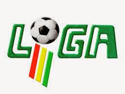Liga Fútbol Boliviano