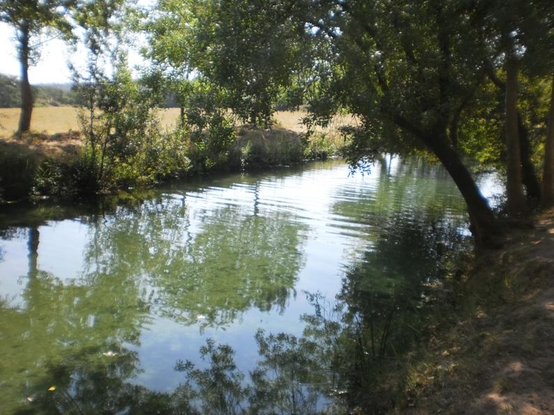 Rio Alviela