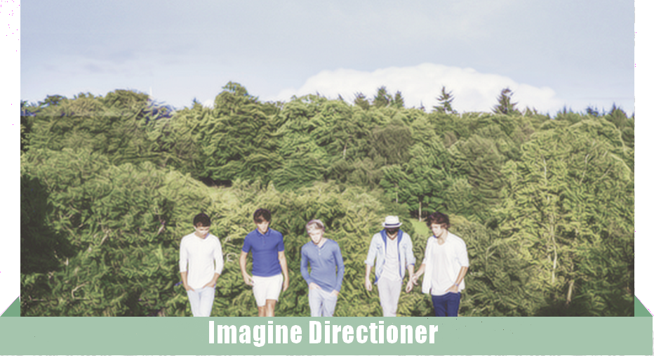 Imagine Directioner