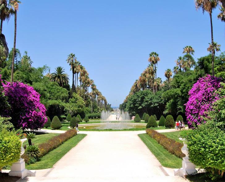 ALGERIA NATURE