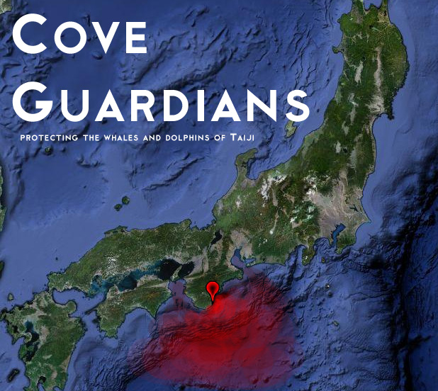 the green eye dawn to death the dolphins of taiji