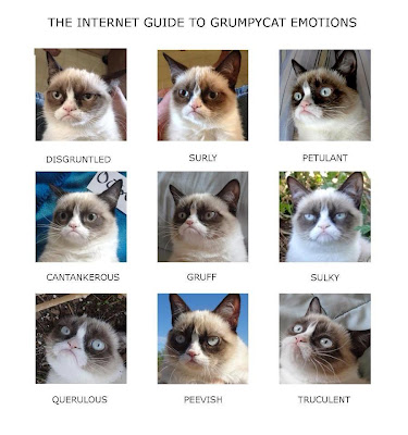 Grumpy Guide