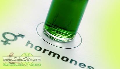 Hormon Berat Badan