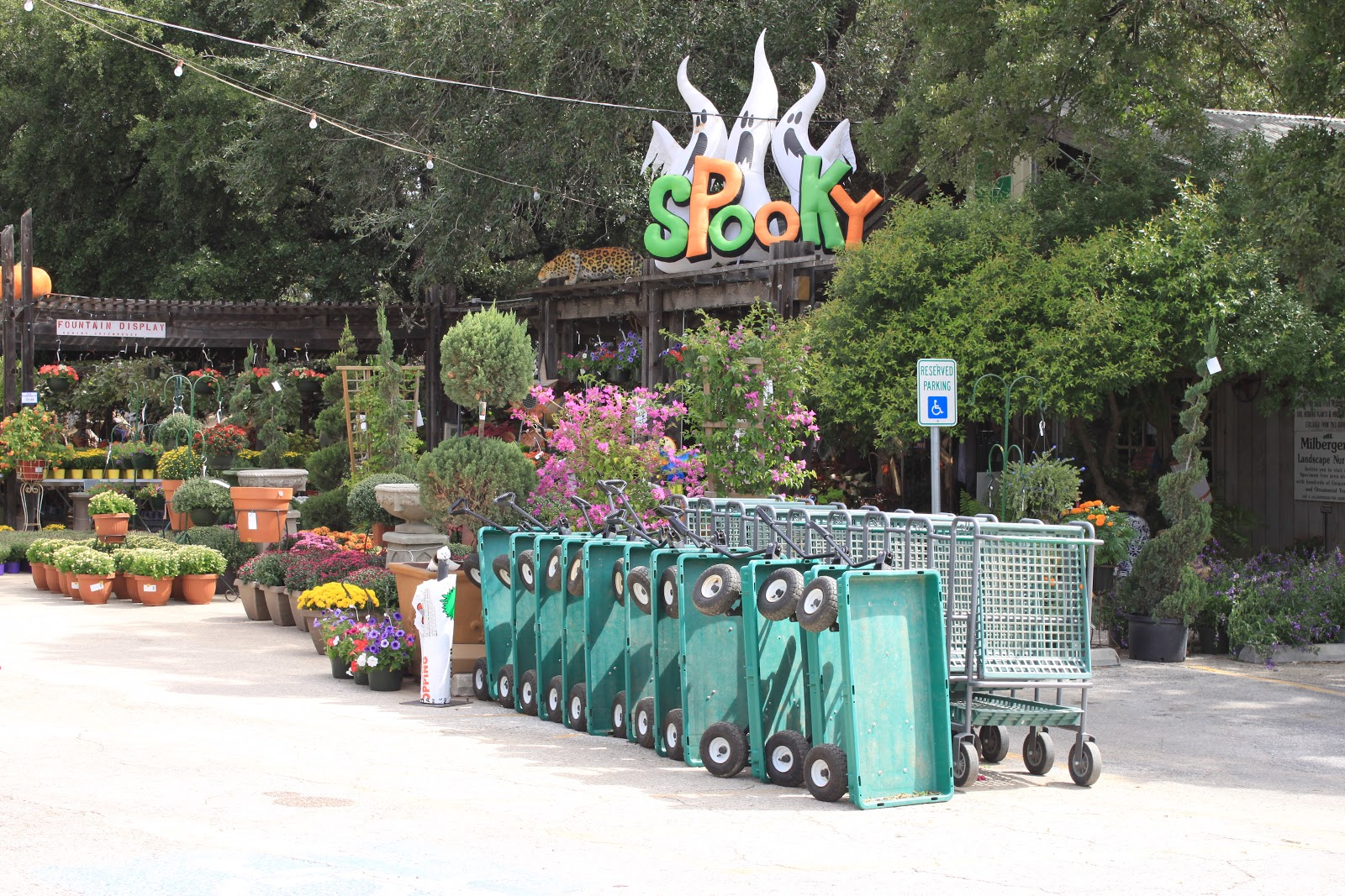Milberger S Is In A Beautiful Tree Shaded Location With Huge Selection Of Plants And Gardening Items During October The Y Decorations Fall Displays