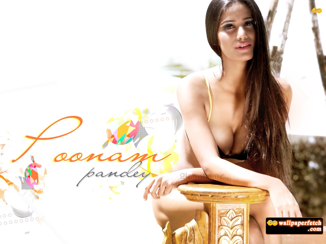 Wallpaper Fetch: Poonam Pandey Sexy Wallpapers