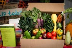 Weekly Veggie Box