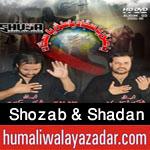 http://www.humaliwalayazadar.com/2015/10/shozab-shadan-nohay-2016.html