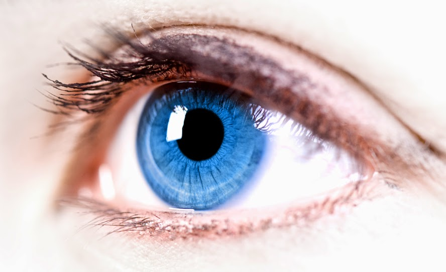 Fakta Unik dan Menarik Tentang Mata