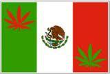 México maconha