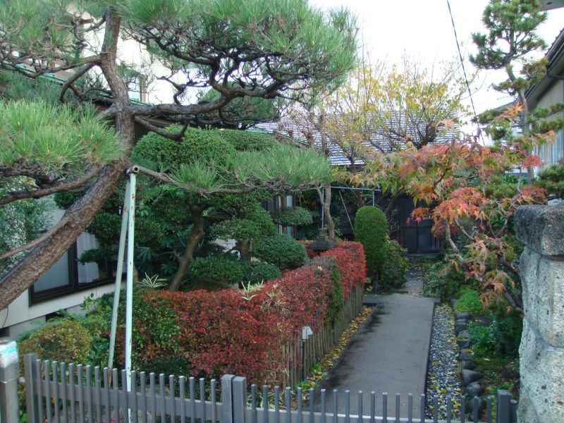 Japanese Gardeners Nearly Always Use Garden Tools Made In Japan Hedge Shears,  Secateurs, Garden