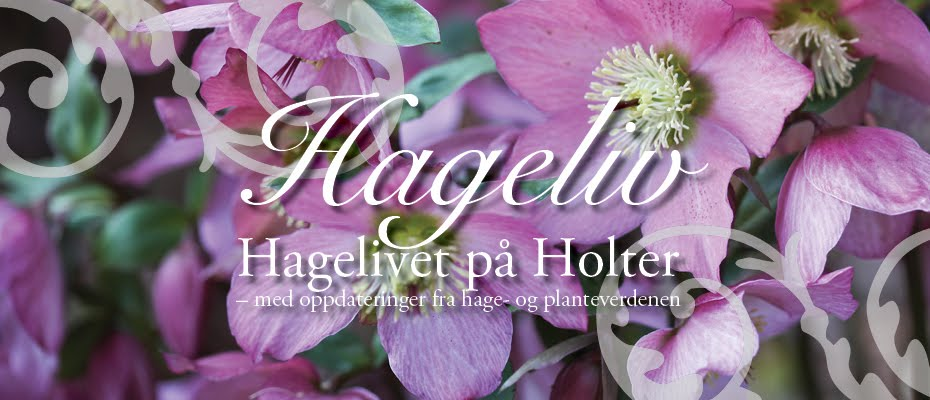 Hageliv